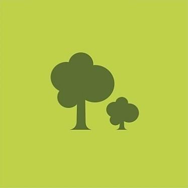 Die GreenLine Küchen sind nachhaltig und schonen die Wälder.